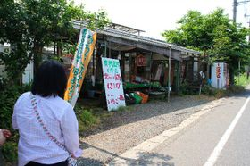 下飯田自然館
