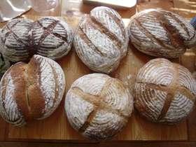 玄米粉のパン
