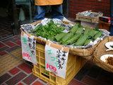 地モノ野菜市
