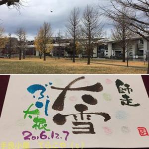 20161207_215228