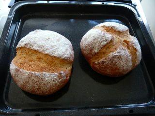 米粉を30%入れたカンパーニュt